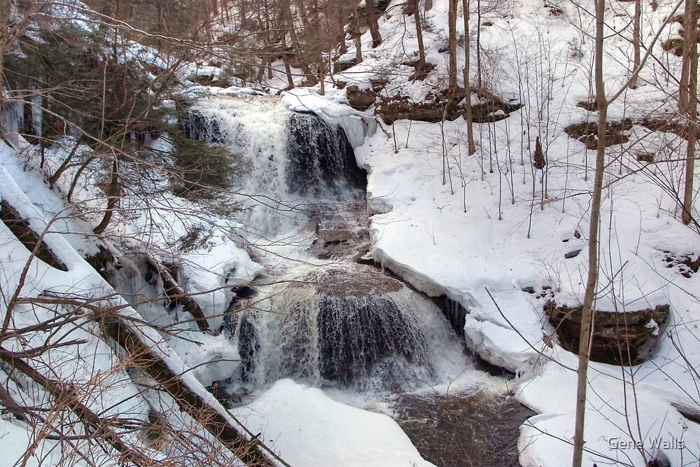 Winter Scene At Tuscarora Falls by Gene Walls
