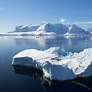 Reflecting on Antarctica 067 by Karl David Hill