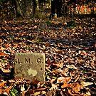 J.M.C. Everlasting Rest.  by Richard Sims