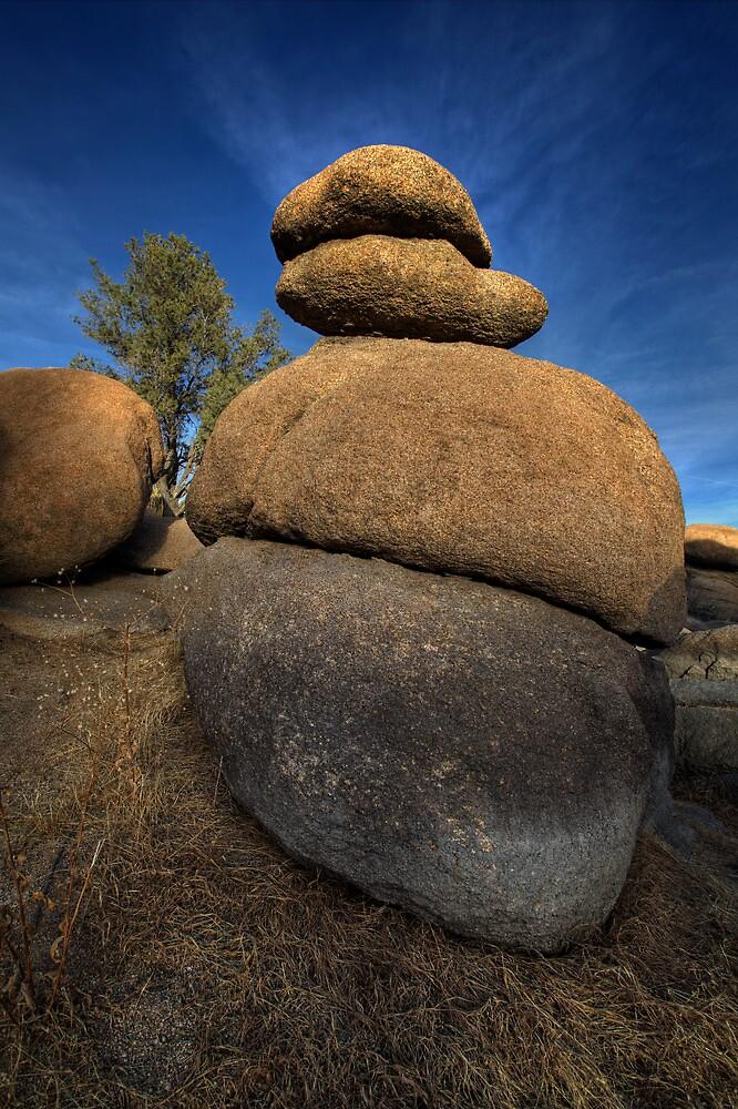 Balancing Act by Bob Larson