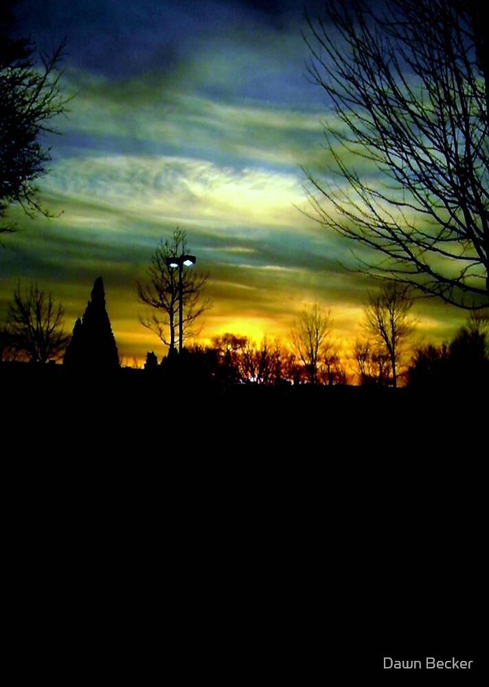 Winter evening sky © by Dawn Becker