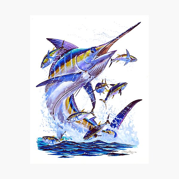 blue marlin and tunas Photographic Print