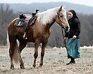 Winter Ride by photosbytony