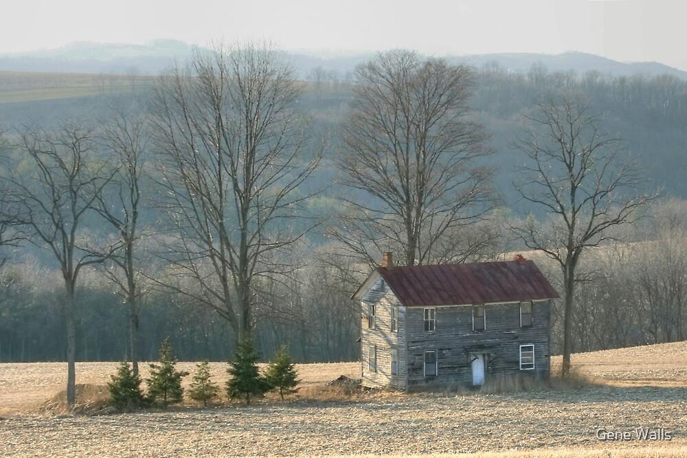 Forgotten Farmhouse In Late Winter by Gene Walls