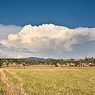 Toogoolawah Plains by Matt Duncan