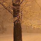 Lots Of Snow by Linda Miller Gesualdo