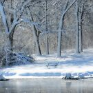 Come Sit With Me In The Snow by Linda Miller Gesualdo