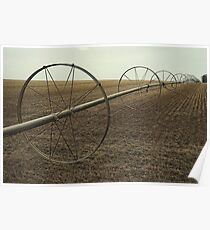 Colorado Irrigation Poster