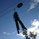 Hanging by Robert Steadman