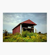 Hay Fever at the Hayes Covered Bridge Photographic Print