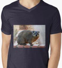 Dassie / Rock hyrax Men's V-Neck T-Shirt