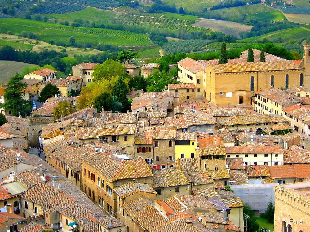 The Rooftops Of San Gimignano by Fara