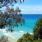 Fraser Island by LibbyWatkins