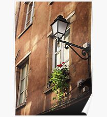 Life on a windowsill - photography print Poster