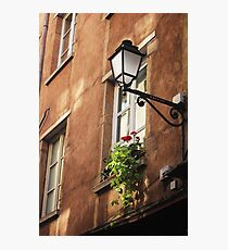 Life on a windowsill - photography print Photographic Print