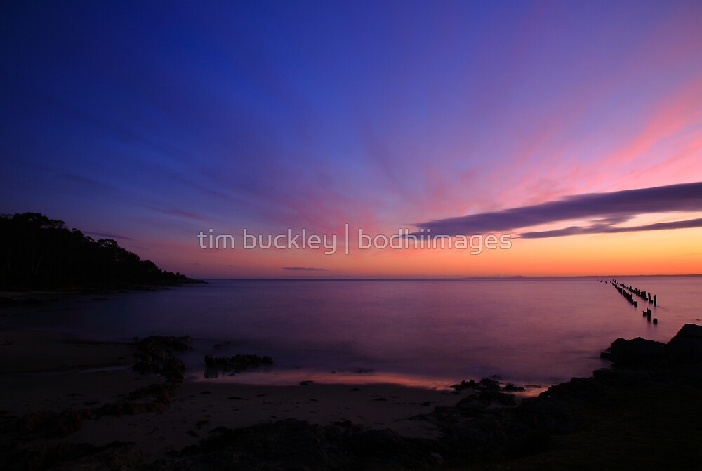 bridport sunrise. north eastern tasmanian coast, australia by tim buckley | bodhiimages