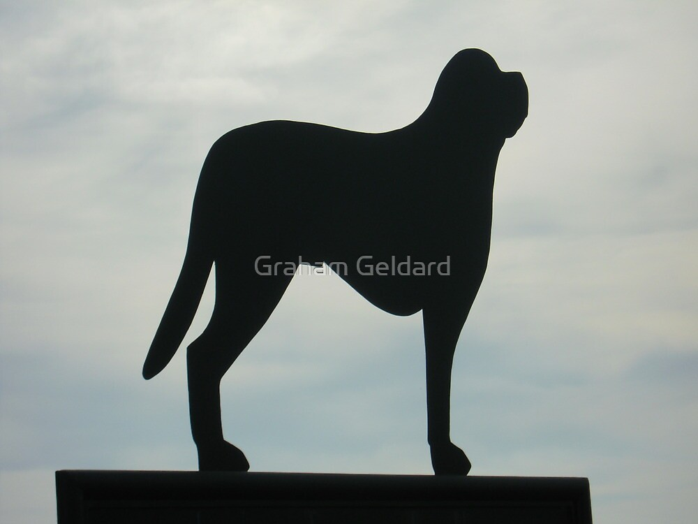 Woof by Graham Geldard