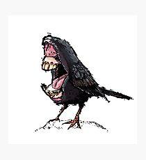 Bigmouth Bird Photographic Print
