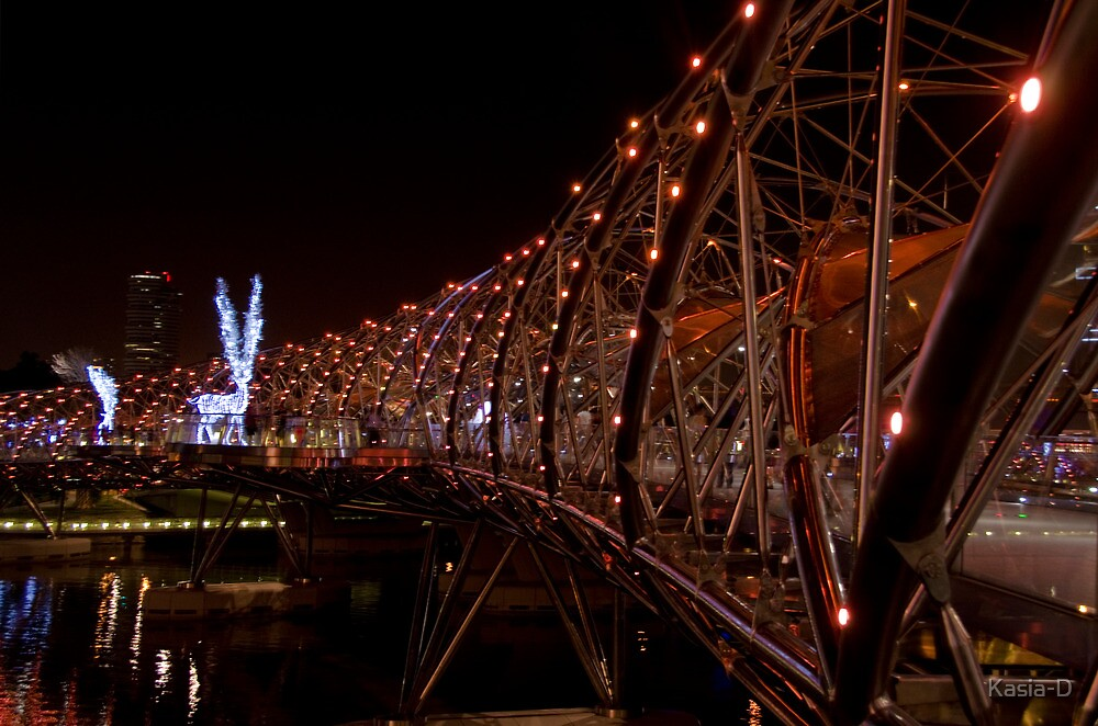 Singapore: The Helix Bridge by Kasia-D