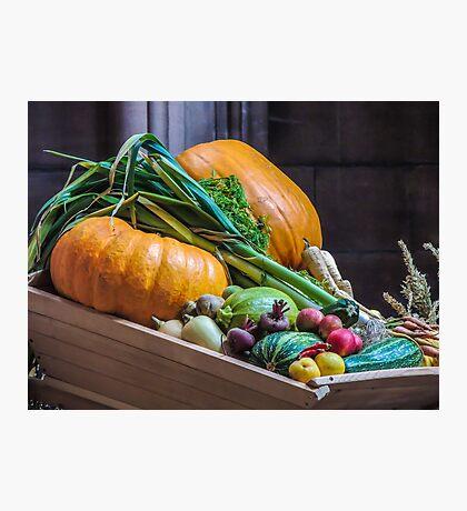 Harvest Festival Photographic Print