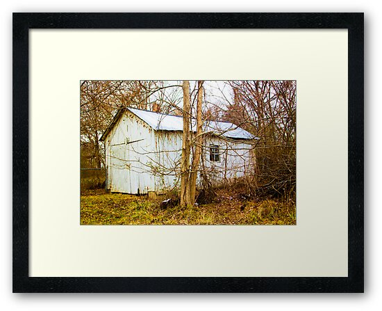 OLD WHITE BARN by Pauline Evans
