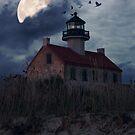 Moonlight At East Point by Debra Fedchin