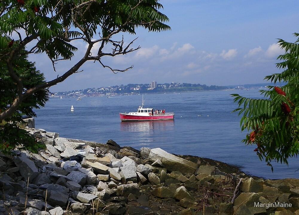 Casco Bay with Portland, Maine Skyline by MaryinMaine