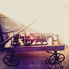 Exposed Wagon by kalikristine