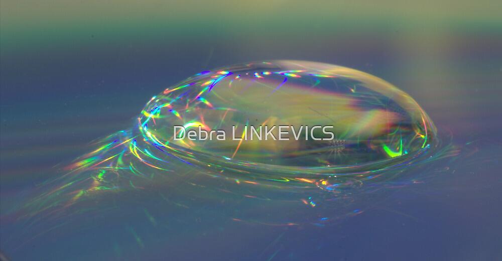 Water Drop by Debra LINKEVICS