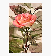Real Rose And Not So Real Leaves Photographic Print