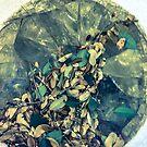 Broken Glass by kalikristine