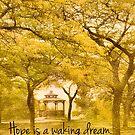 Hope is A Waking Dream by Marilyn Cornwell