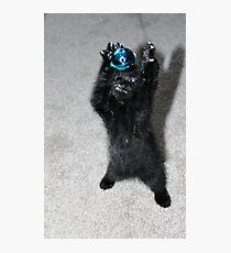 Kitten Monster Photographic Print