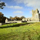 Tintern Abbey, Wexford, Ireland. by Martina Fagan