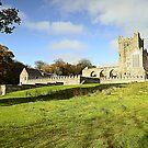 Tintern Abbey, Wexford, Ireland. by Martina Fagan