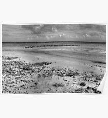 Yamacraw Beach in Nassau, The Bahamas (Black & White) Poster