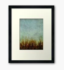 Brush Fire Framed Print