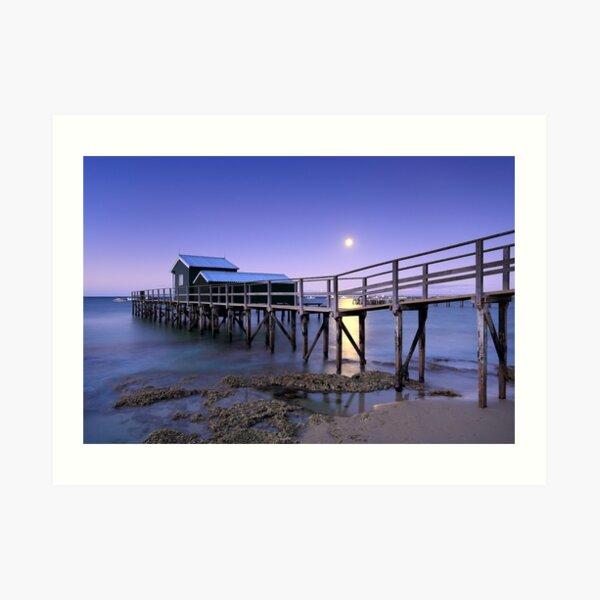 Moonrise at Shelley Beach - Portsea Art Print
