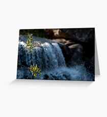 Foreground Greeting Card
