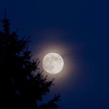 Lunar Luminance by ProfAudio