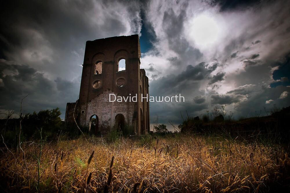 Braveheart by David Haworth