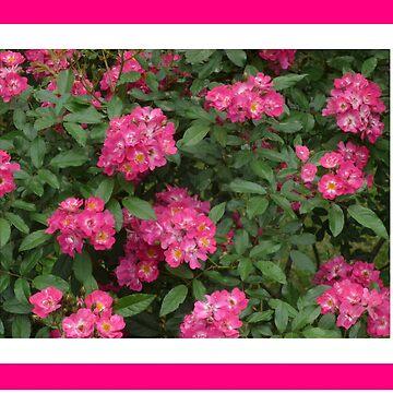 Flowers by LittleCsDesigns