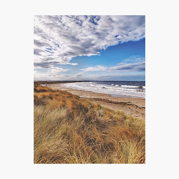 Looking over the sand dunes Photographic Print