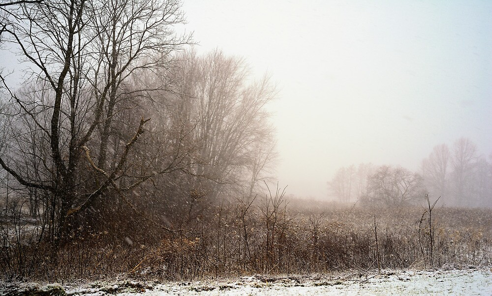First snow of winter by woodnimages
