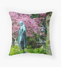 A Spring view on Mr. Bunsen Throw Pillow