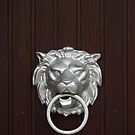 Lion Head Doorknocker by drawwithlight