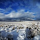 High Desert Snows by SB  Sullivan