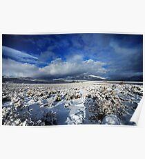 High Desert Snows Poster