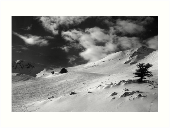 On the top of the World - Snowbasin Ski Slopes BW by Anton Oparin