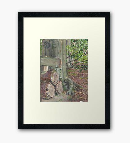 Gegrondvest ~Founded Framed Print